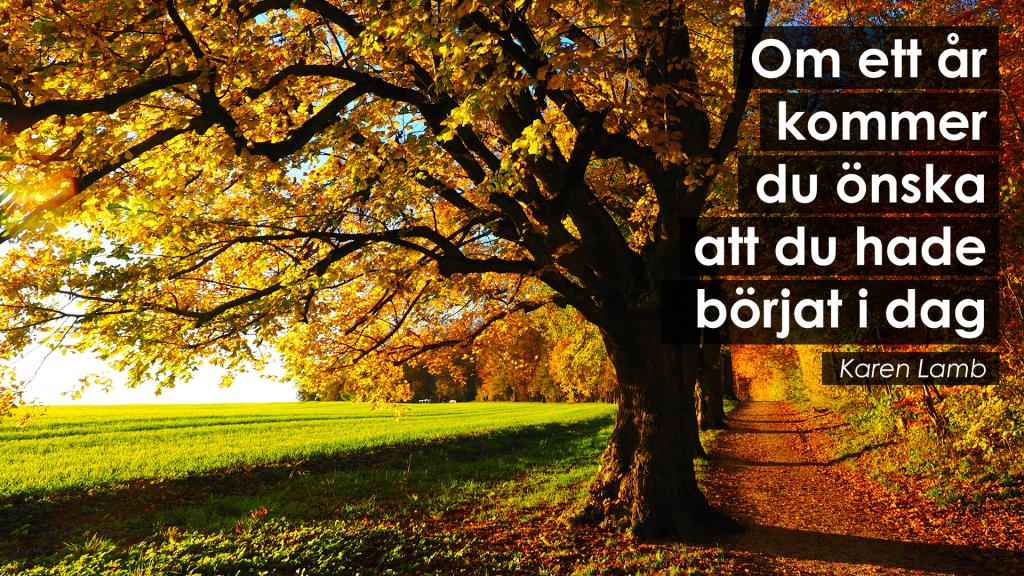 Om ett år kommer du önska att du hade börjat i dag | merstruktur.se #inspiration #motivation