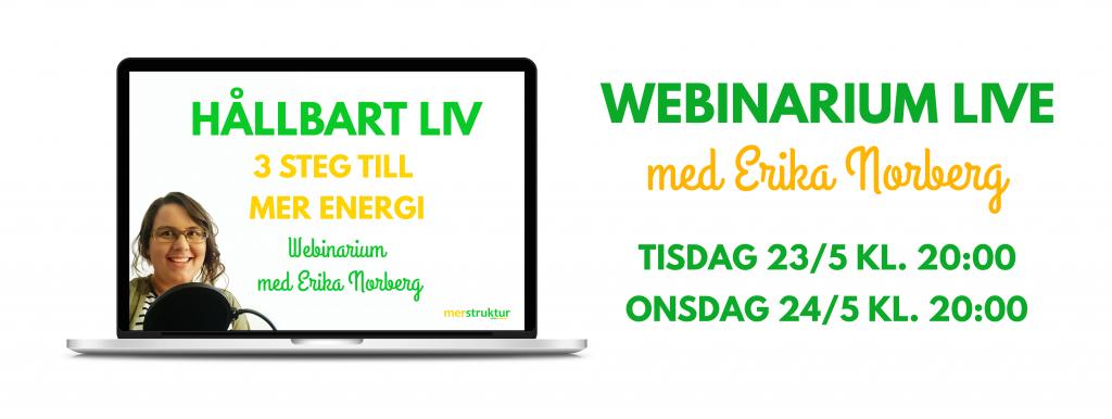Hållbart liv - 3 steg till mer energi. Webinarium med Erika Norberg. merstruktur.se